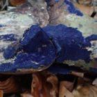 Cobalt Crust